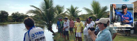 Curso de Pesca by Nelson Nakamura