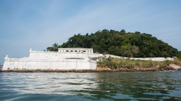 Roteiro 3 – Manguezal + Volta na Ilha